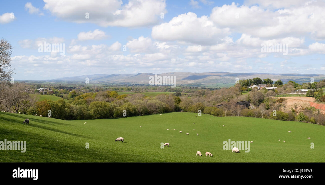A panoramic view looking across the Eden Valley - Stock Image