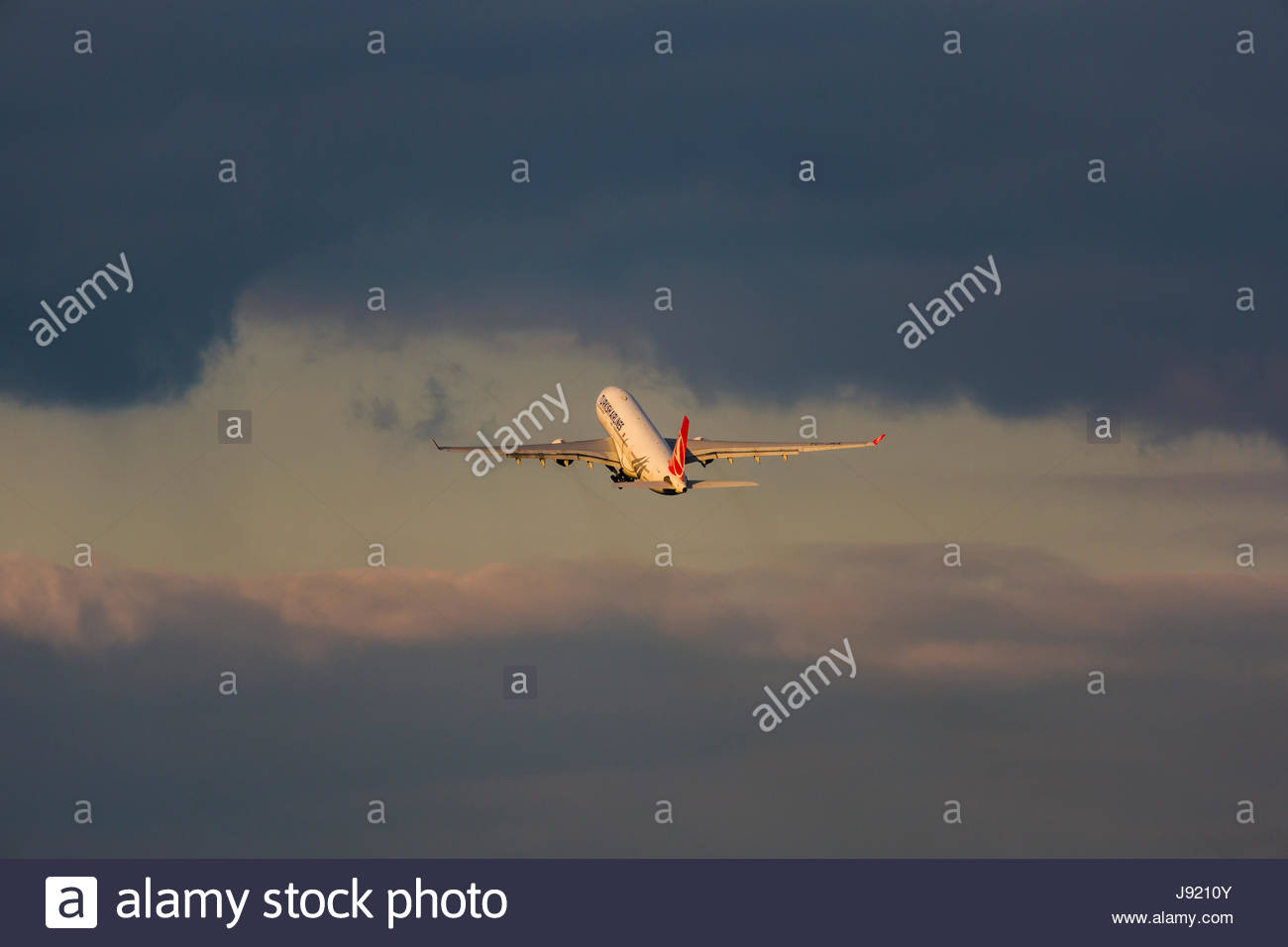Airbus A330 twin-jet taking off dark cloud spotlight departure start air traffic aviation flying long-haul airliner - Stock Image