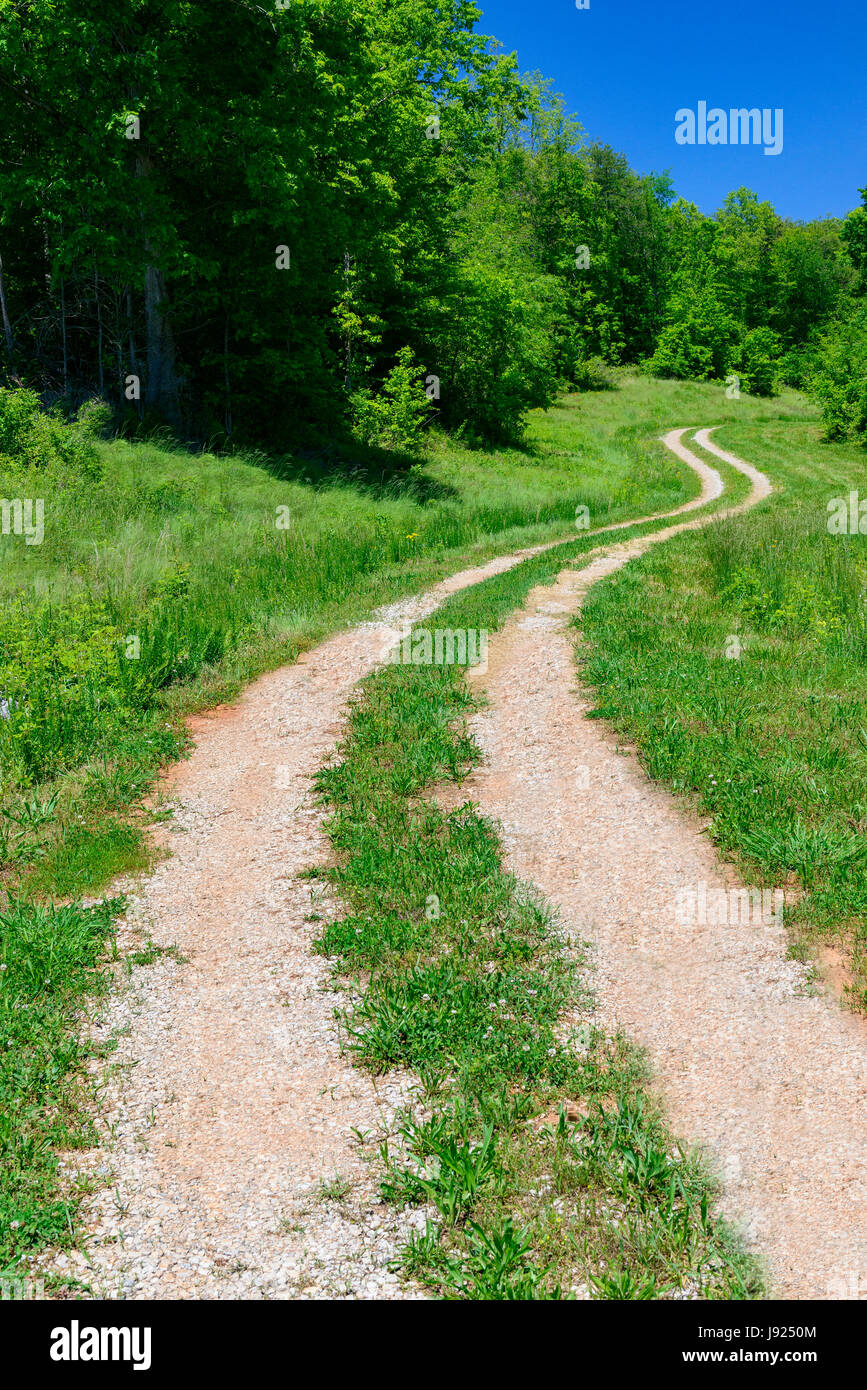 A curving road leads the eye into the distance on a vibrant spring morning. - Stock Image