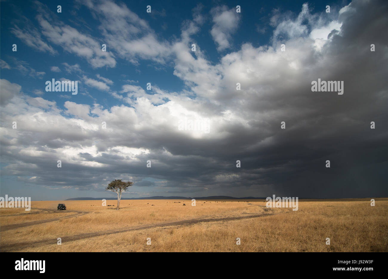 Storm clouds over Masai MAra - Stock Image