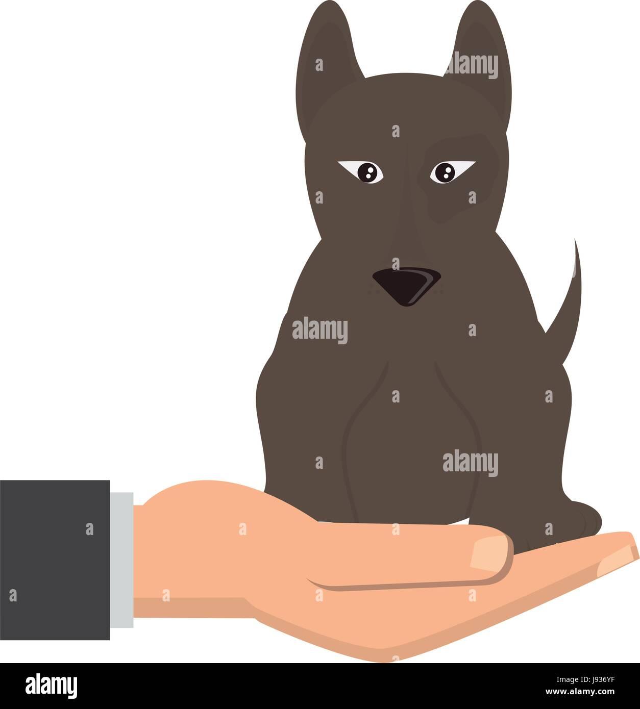 human hand holding dog pet veterinary concept vector illustration - Stock Vector