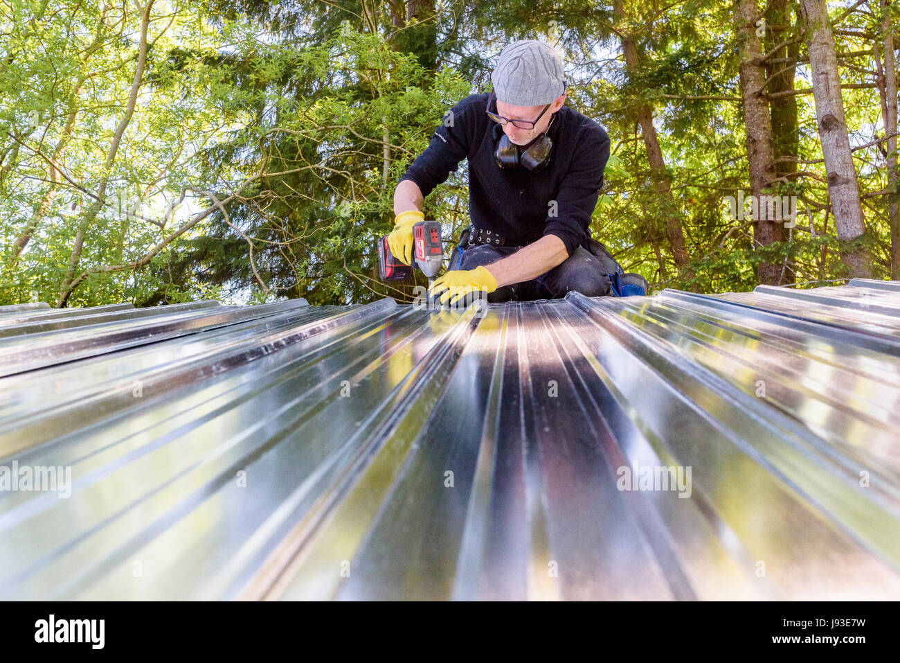 Man working installing metal roof on shed. - Stock Image