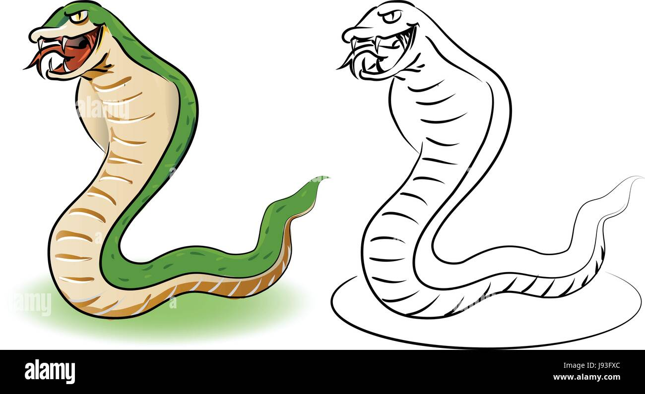 Cartoon snake. Coloring book educational for kids, Coloring Stock ...