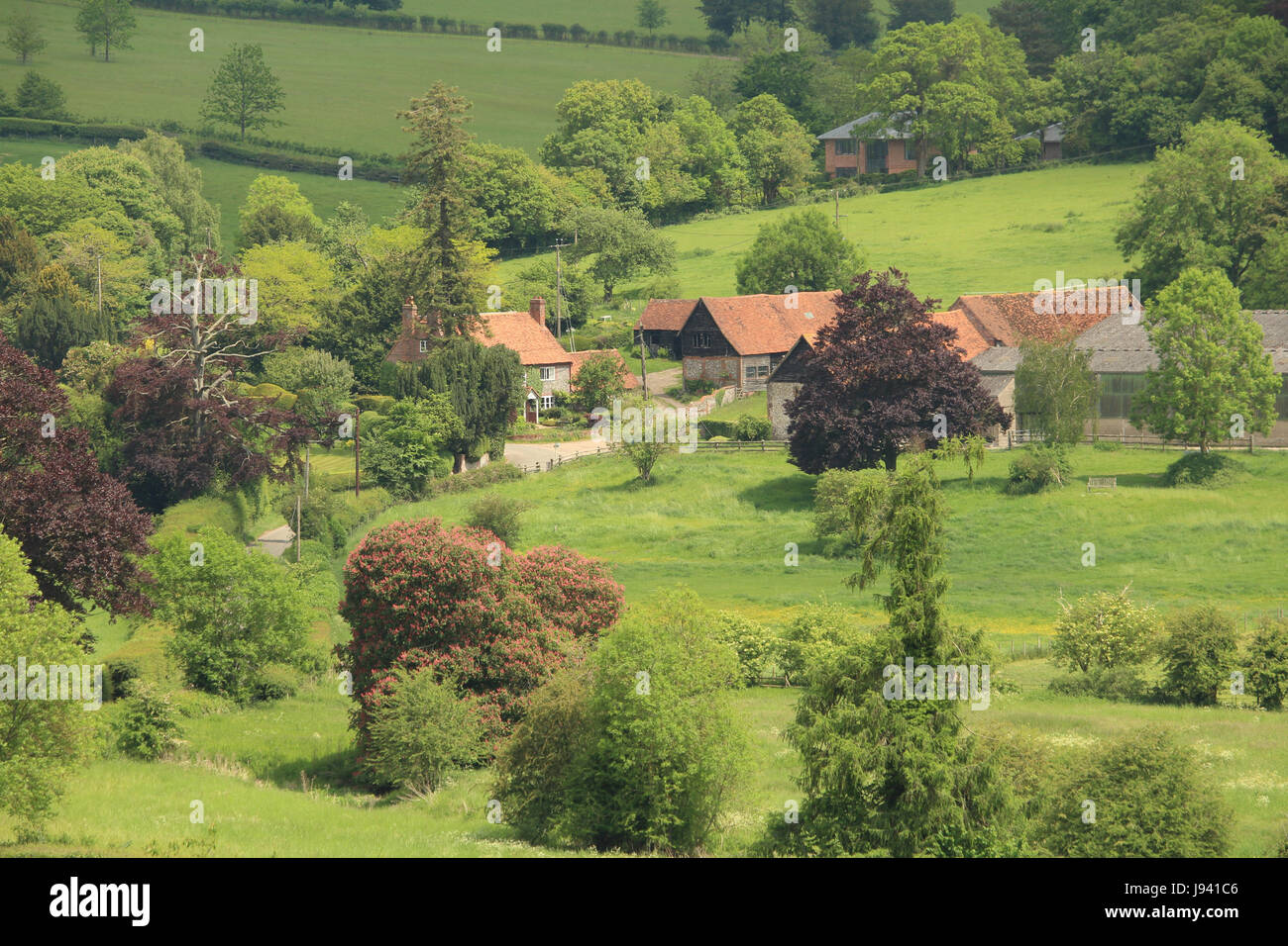 An English Rural Landscape in the Hambleden Valley in the Chiltern Hills - Stock Image