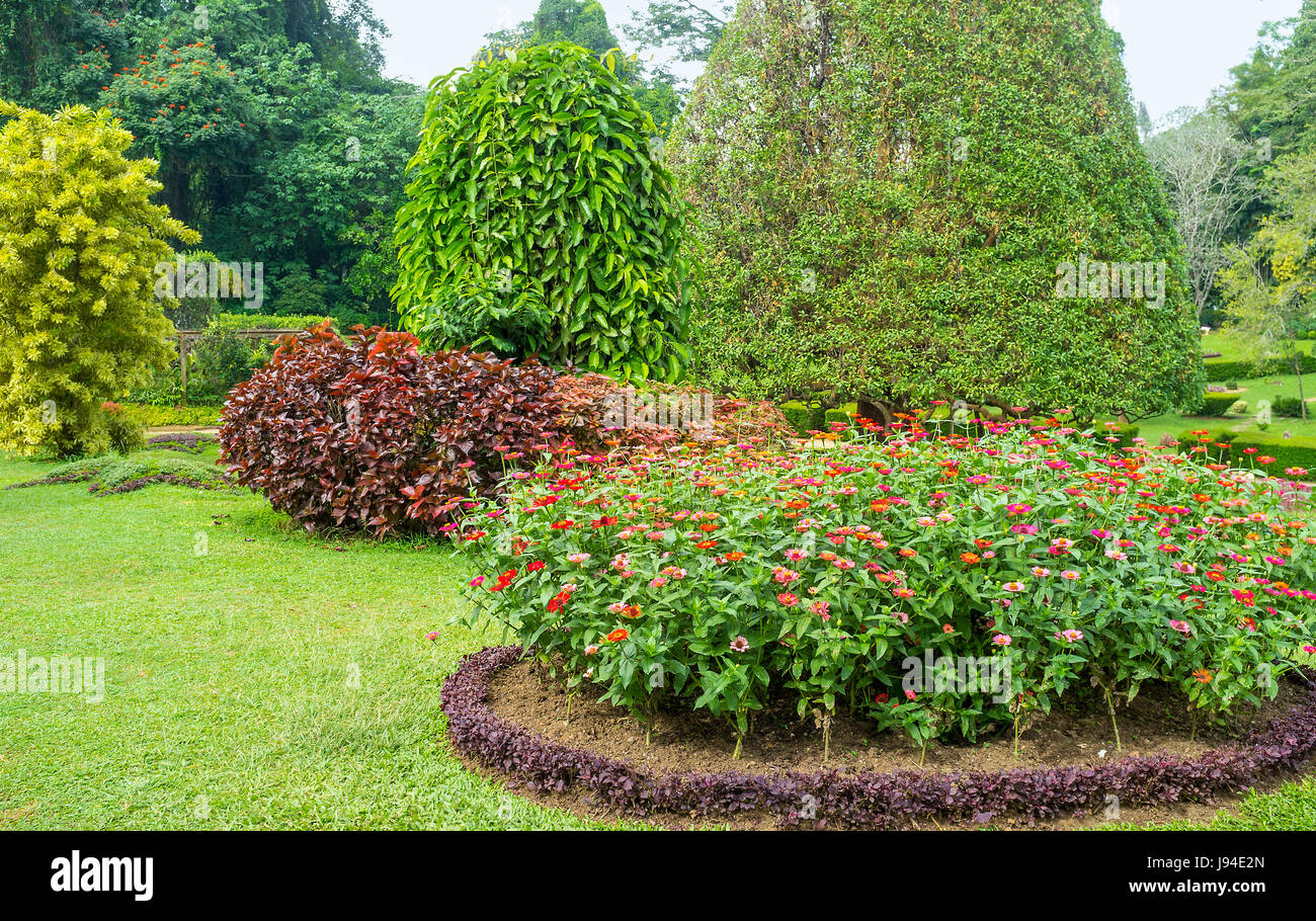 Beautiful Flower Beds Are The Visit Cards Of Royal Botanical Garden