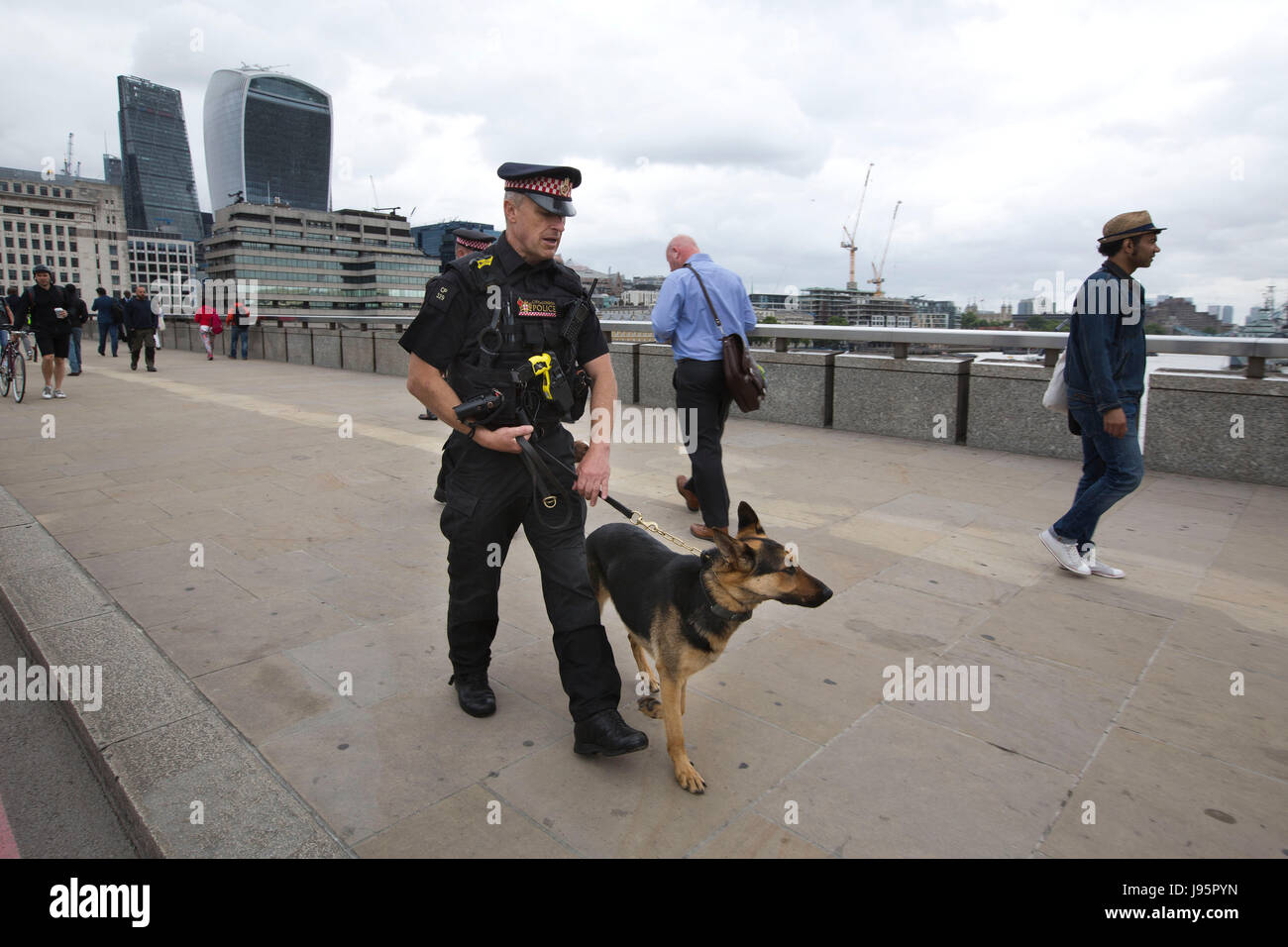 Metropolitan Police Dogs team on the London Bridge after the road is closed to traffic after the London Bridge Terror Stock Photo