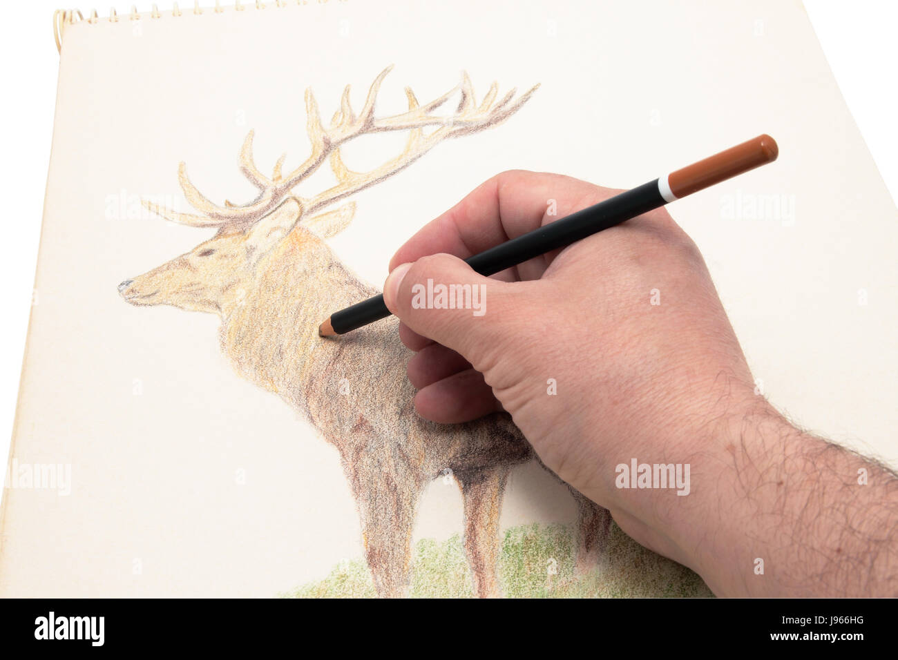 art, colour, painting, drawing, photo, picture, image, copy