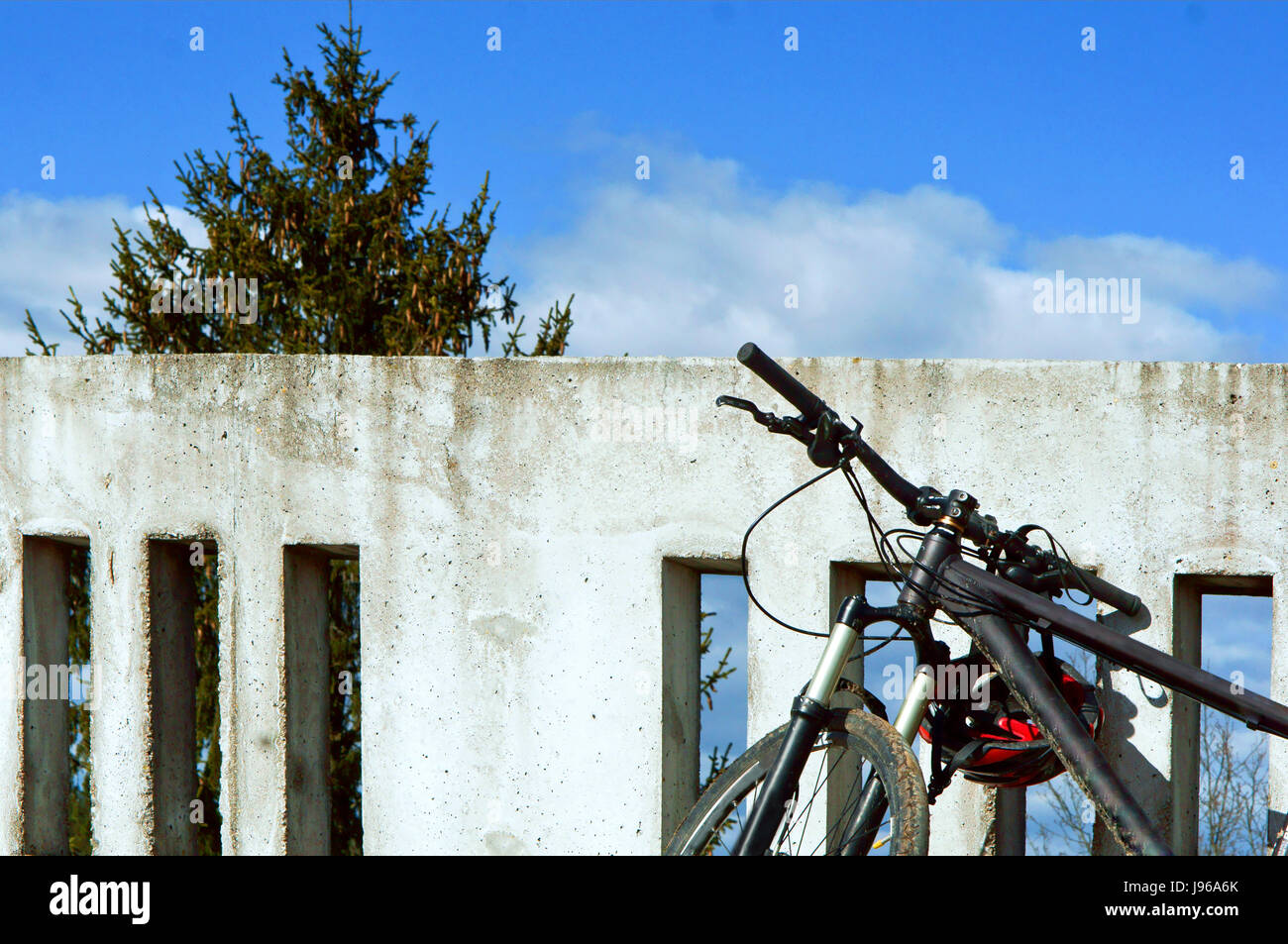 ride, up high, tree, Bicycle, wall, concrete, fencing - Stock Image