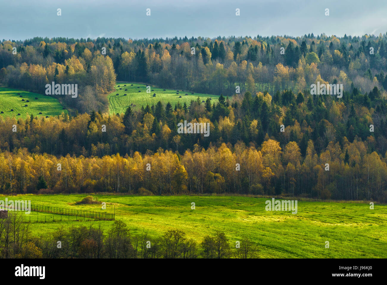 Autumn morning in the Vologda region of Russia. - Stock Image