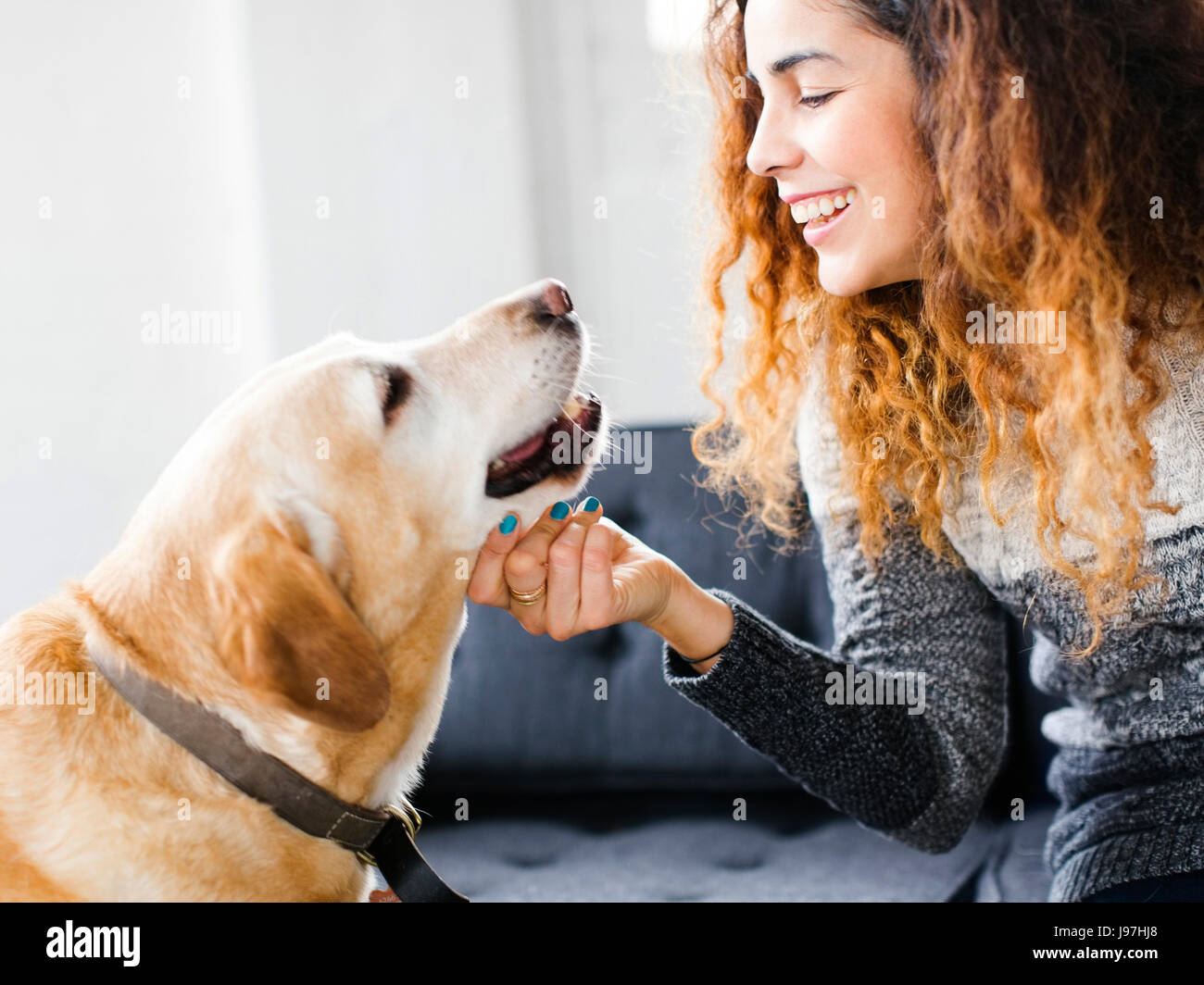 Smiling woman stroking dog in living room - Stock Image