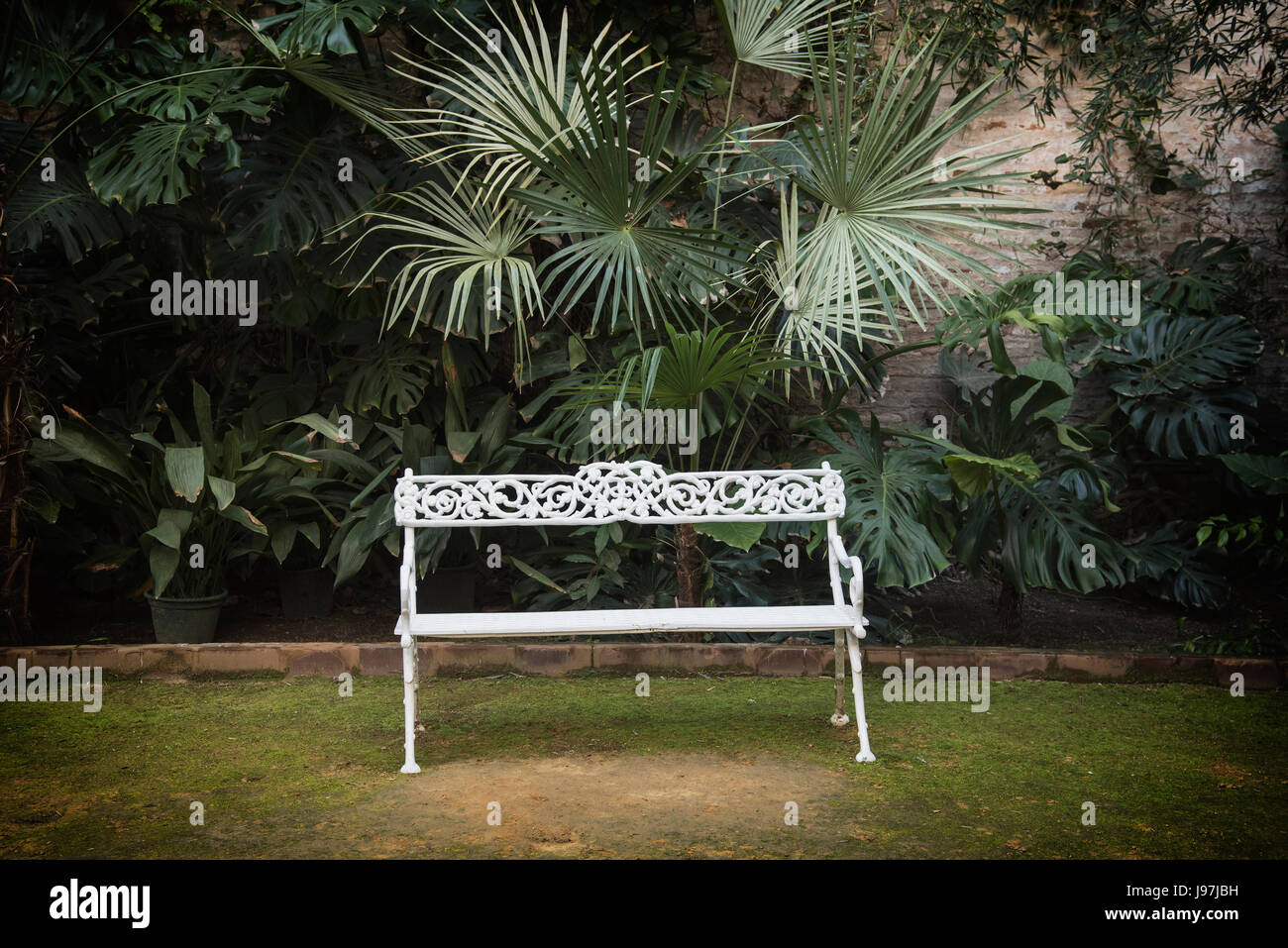 Spain, Andalusia, Seville, La Macarena, Ornate garden bench with palm plant - Stock Image