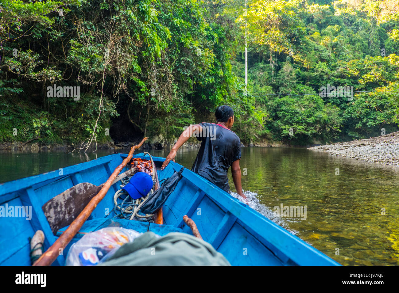 Pulling the wooden boat at shallow waters along the Embalok river in the Heart Of Borneo, West Kalimantan Indonesia. - Stock Image