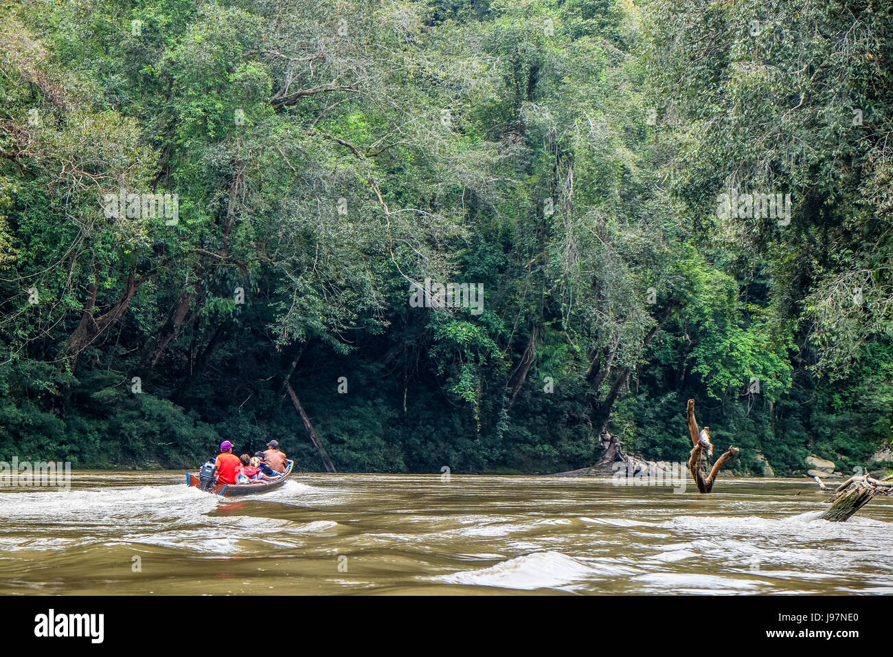 Travelling on long boat along the Embaloh river to Betung Kerihun National Park in the Heart Of Borneo, West Kalimantan, - Stock Image