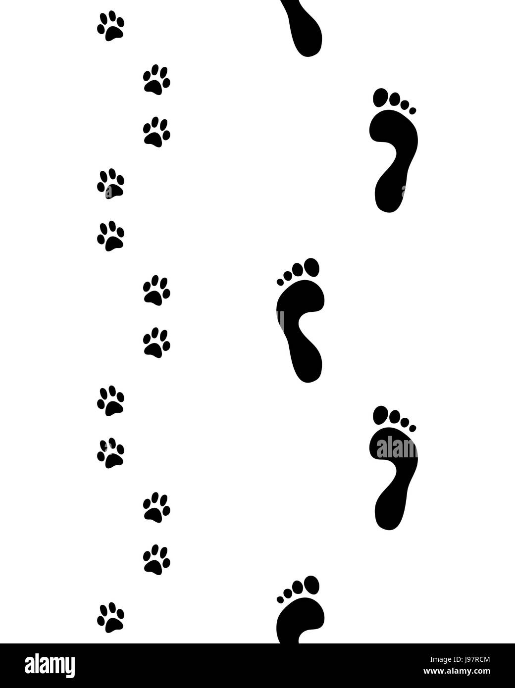 Prints of human feet and dog paws,seamless pattern, vector - Stock Image