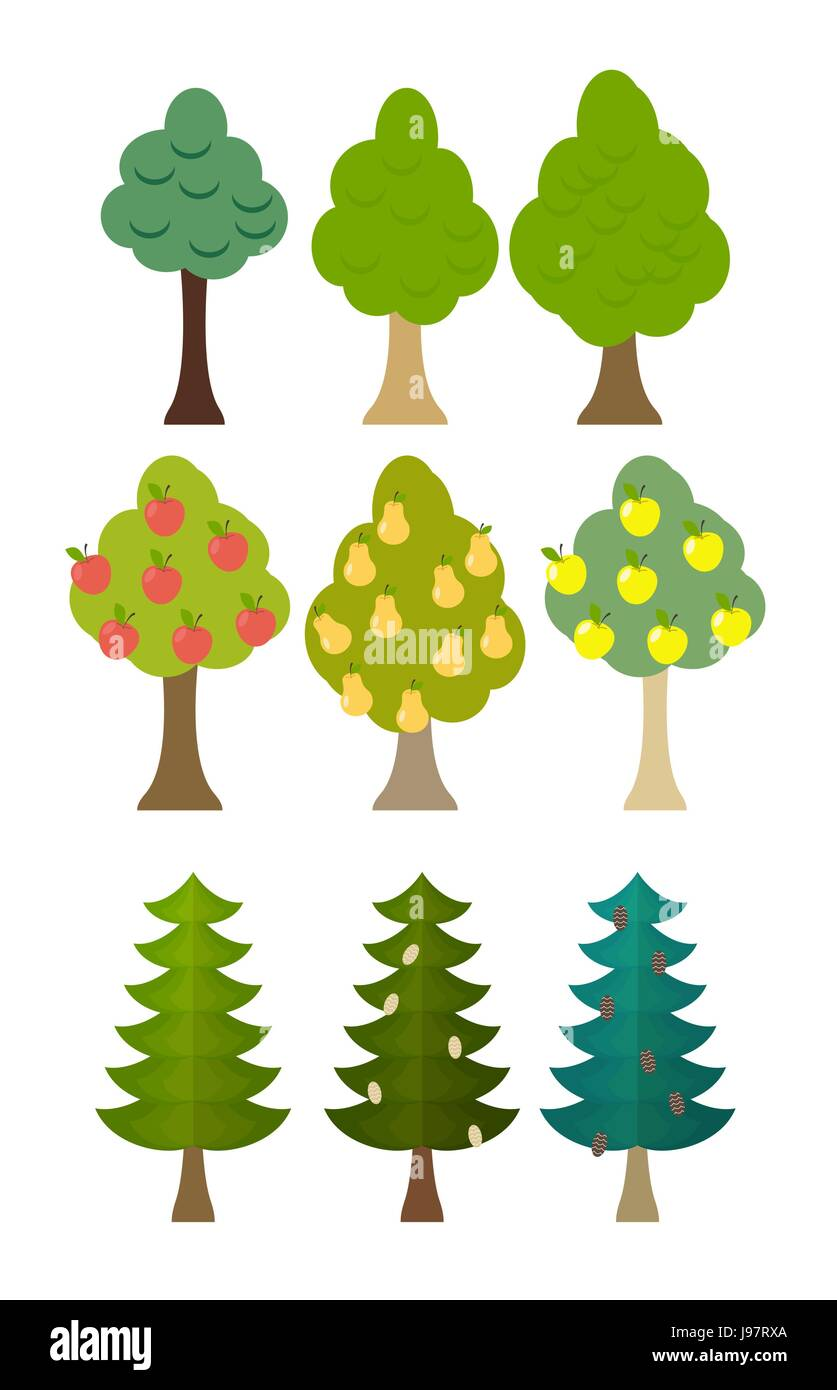 set Tree icon fruit trees, conifers, forest trees. Vector illustration - Stock Vector