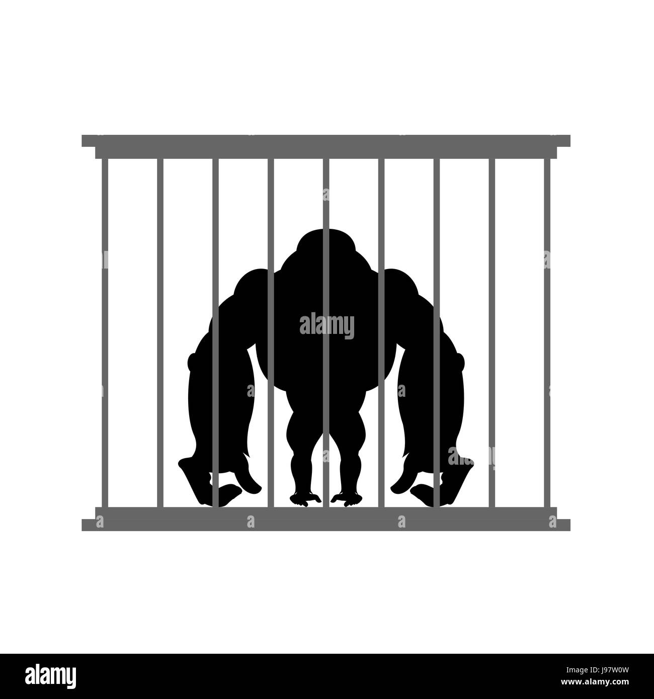 Gorilla in cage. Animal in  Zoo behind bars. Big and strong monkey in captivity. Dangerous wild animal in captivity. - Stock Image