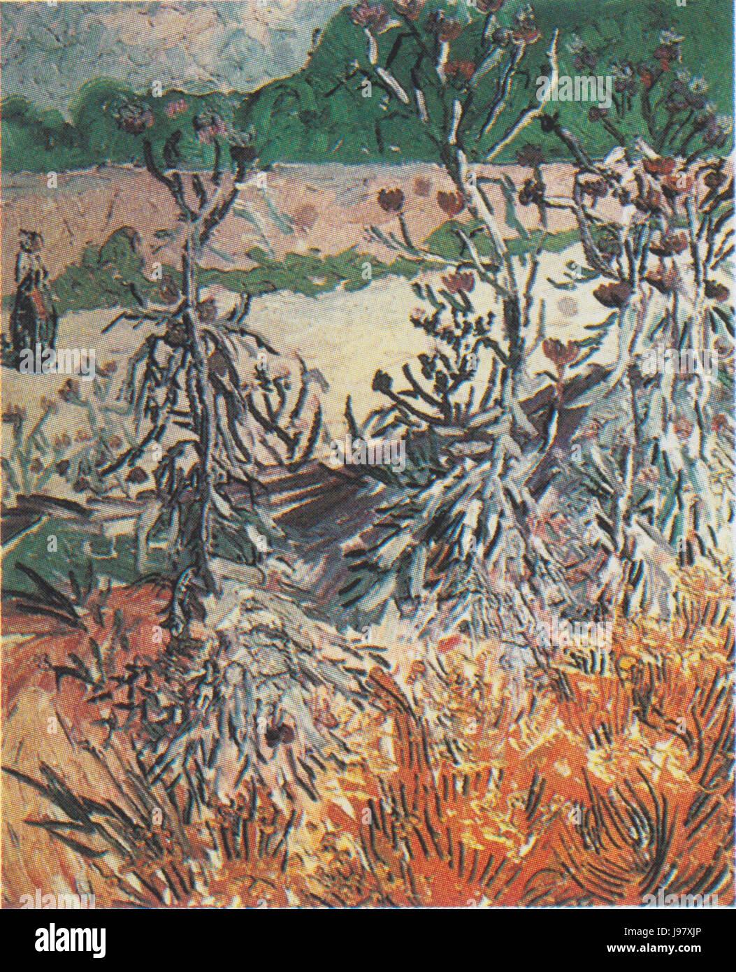 Van Gogh   Disteln Stock Photo