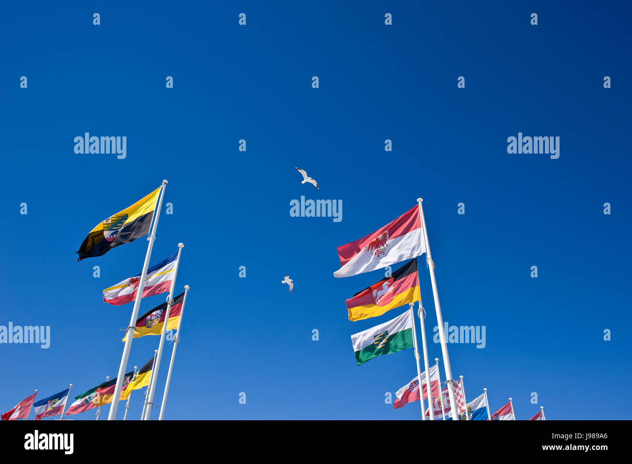 german national flags Stock Photo