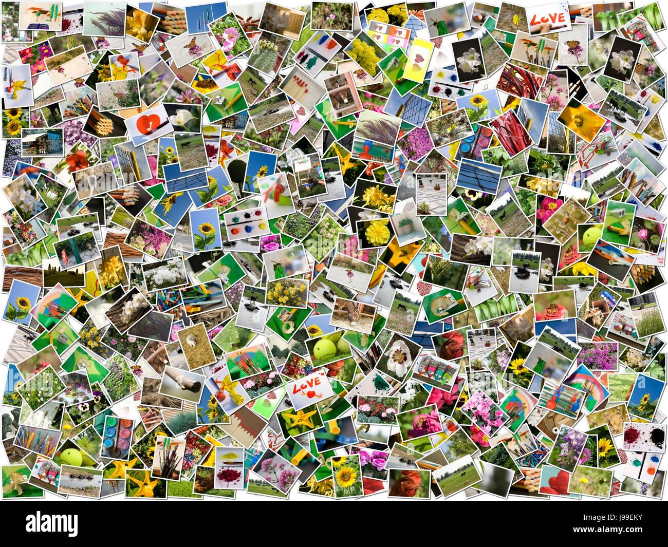 collage, photos, mosaics, mosaic, postcards, images, many, montage, assemblage, - Stock Image