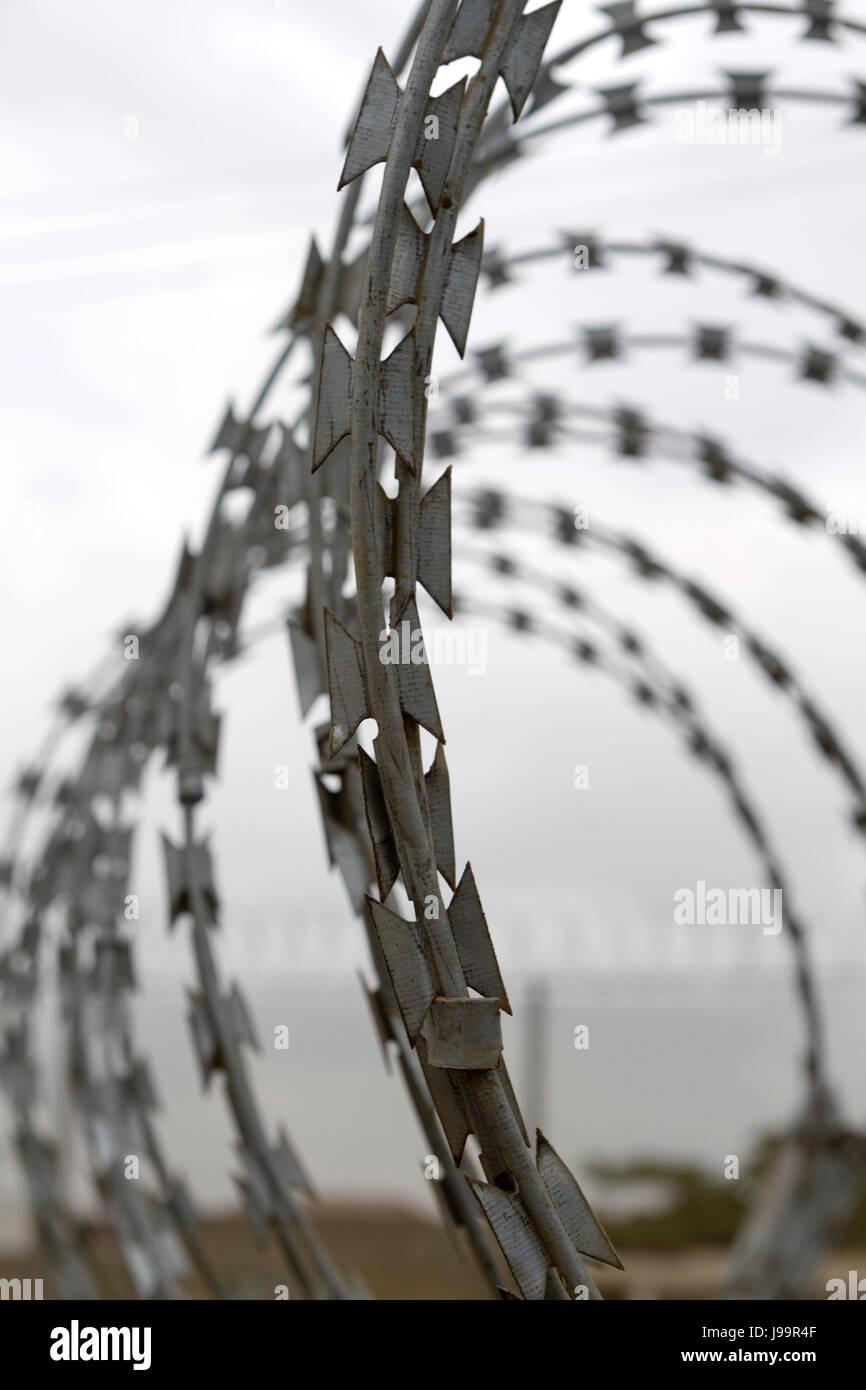 Razor wire - Stock Image
