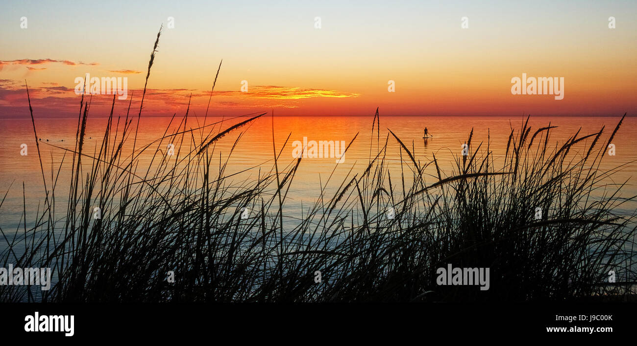 A silhouette of a small paddle boarder in the distance at sunset through the beach grasses on Empire Beach, Lake - Stock Image