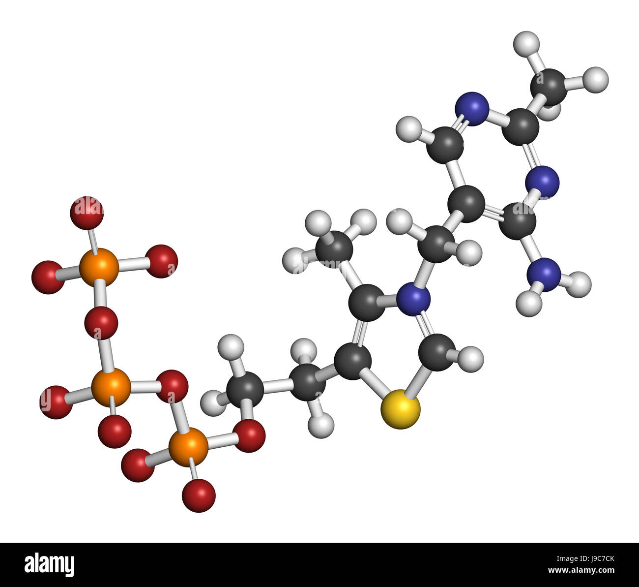 Thiamine triphosphate molecule. 3D rendering. Atoms are represented as spheres with conventional color coding Stock Photo