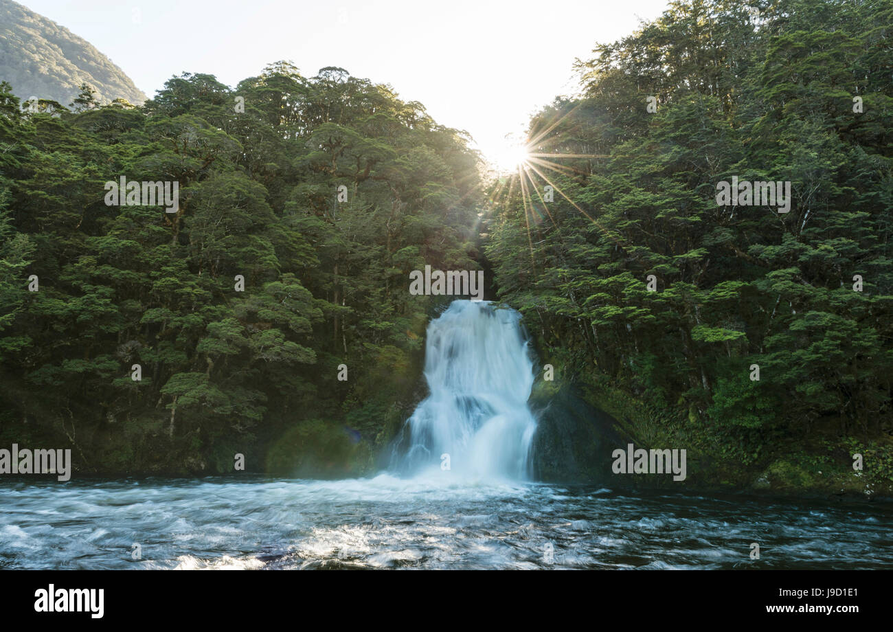 Sunshine, waterfall in forest, Iris Burn Falls, Kepler Tack, Fiordland National Park, Southland, New Zealand - Stock Image