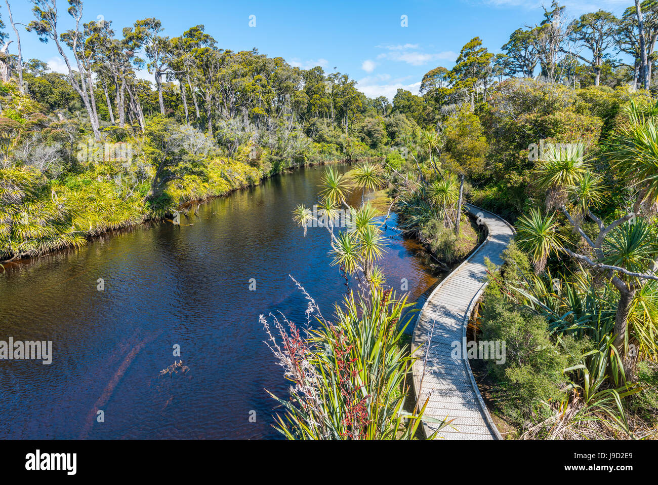 River with path, Ship Creek, moderate rainforest, Haast, West Coast, New Zealand - Stock Image