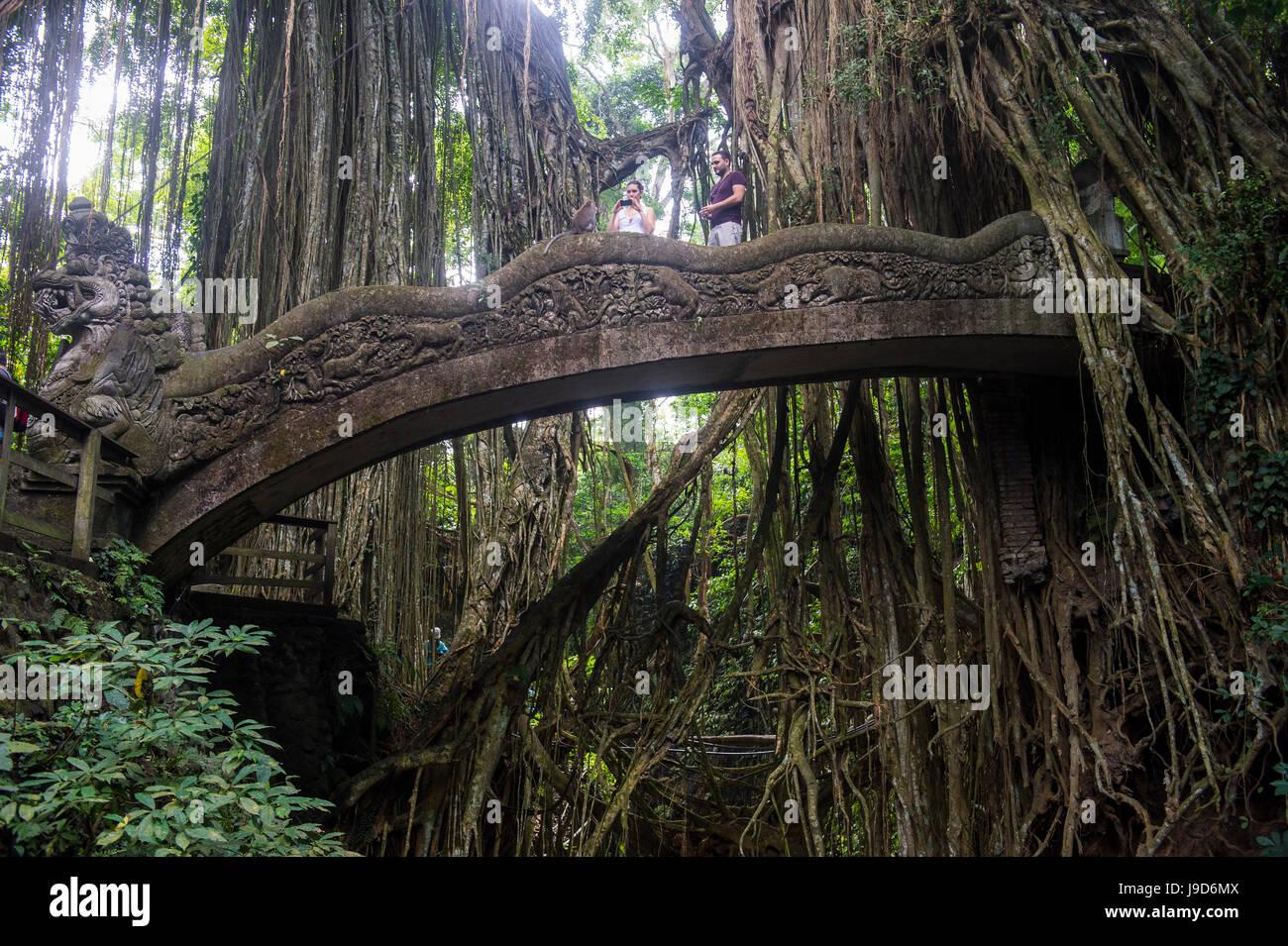 Very beautiful carved bridge with overgrowing trees, Sacred Monkey Forest Sanctuary, Ubud, Bali, Indonesia, Southeast - Stock Image