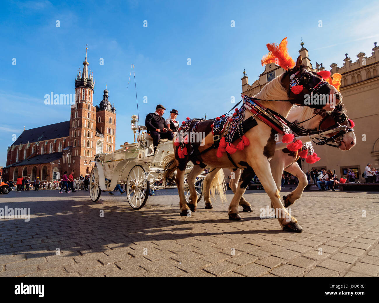 Horse Carriage with St. Mary Basilica in the background, Main Market Square, Cracow, Lesser Poland Voivodeship, - Stock Image