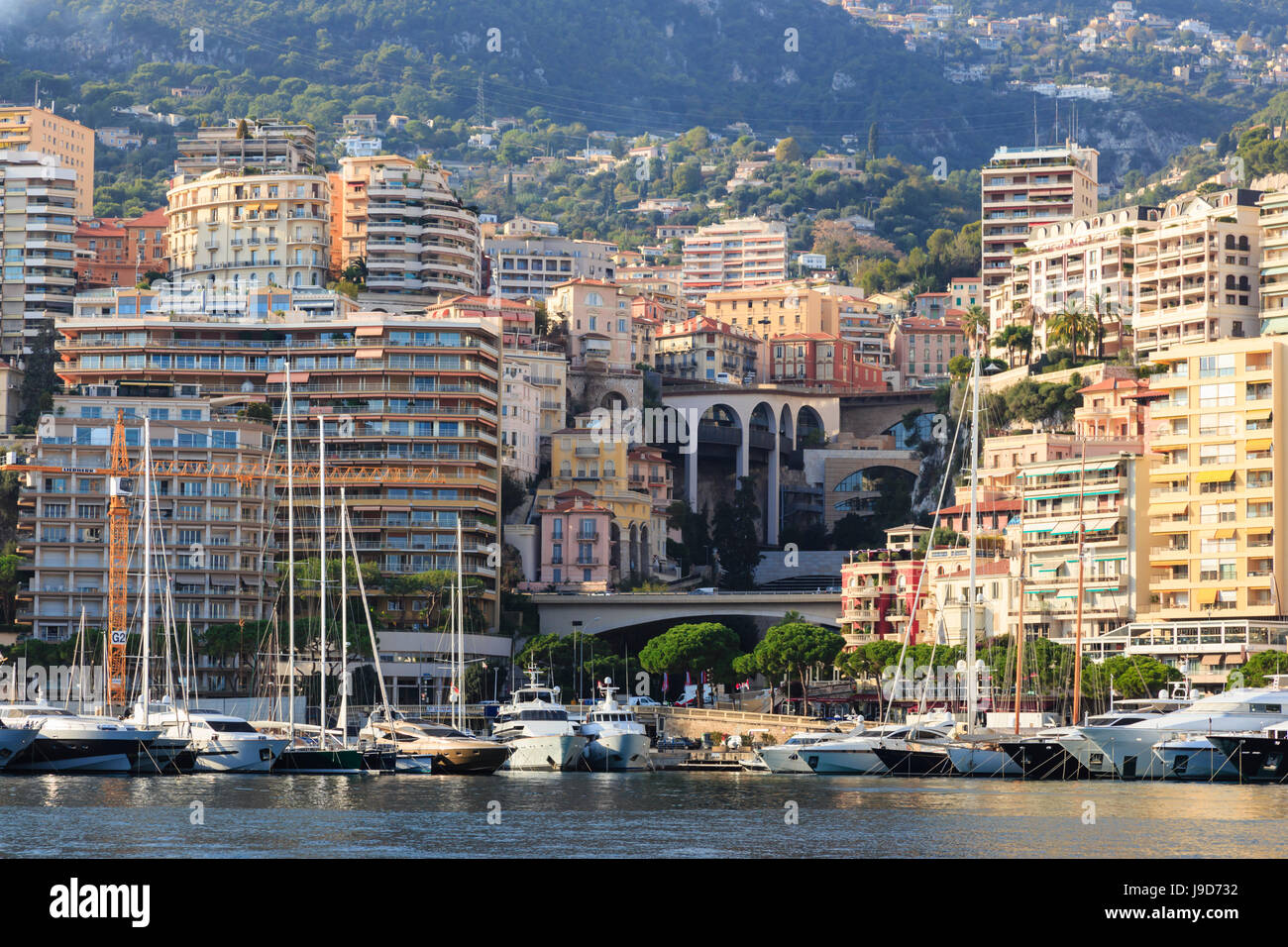 Pastel hues of the glamorous harbour of Monaco (Port Hercules) with many yachts, wooded hill side, Monte Carlo, - Stock Image
