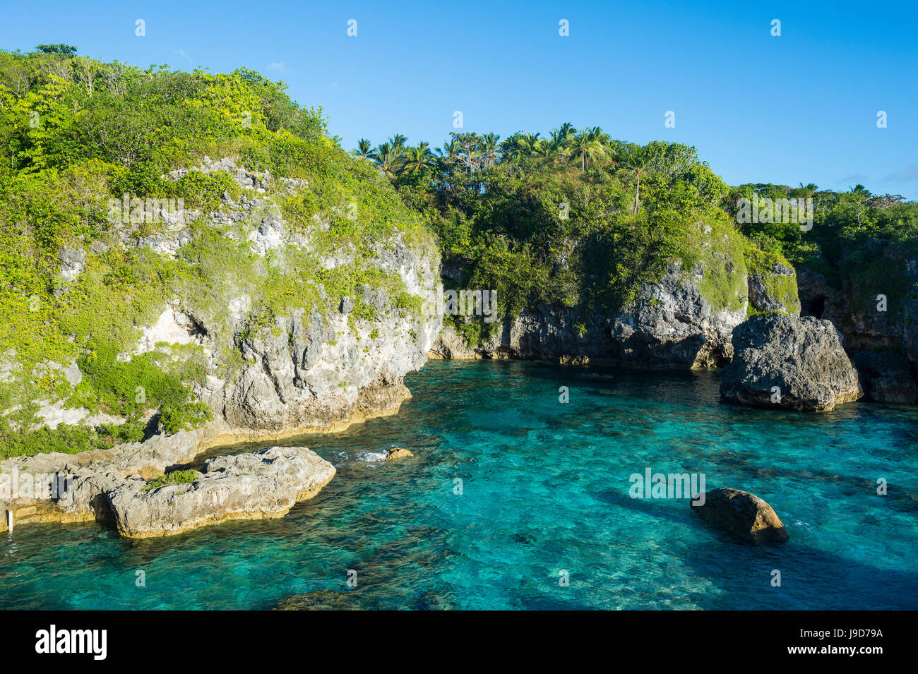 Turquoise waters in the Limu low tide pools, Niue, South Pacific, Pacific - Stock Image
