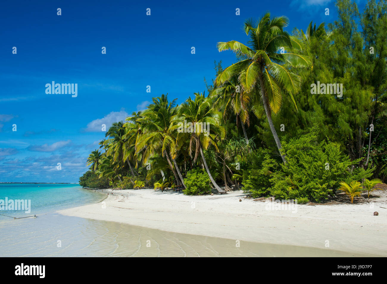 White sand bank in the turquoise waters of the Aitutaki lagoon, Rarotonga and the Cook Islands, South Pacific, Pacific - Stock Image
