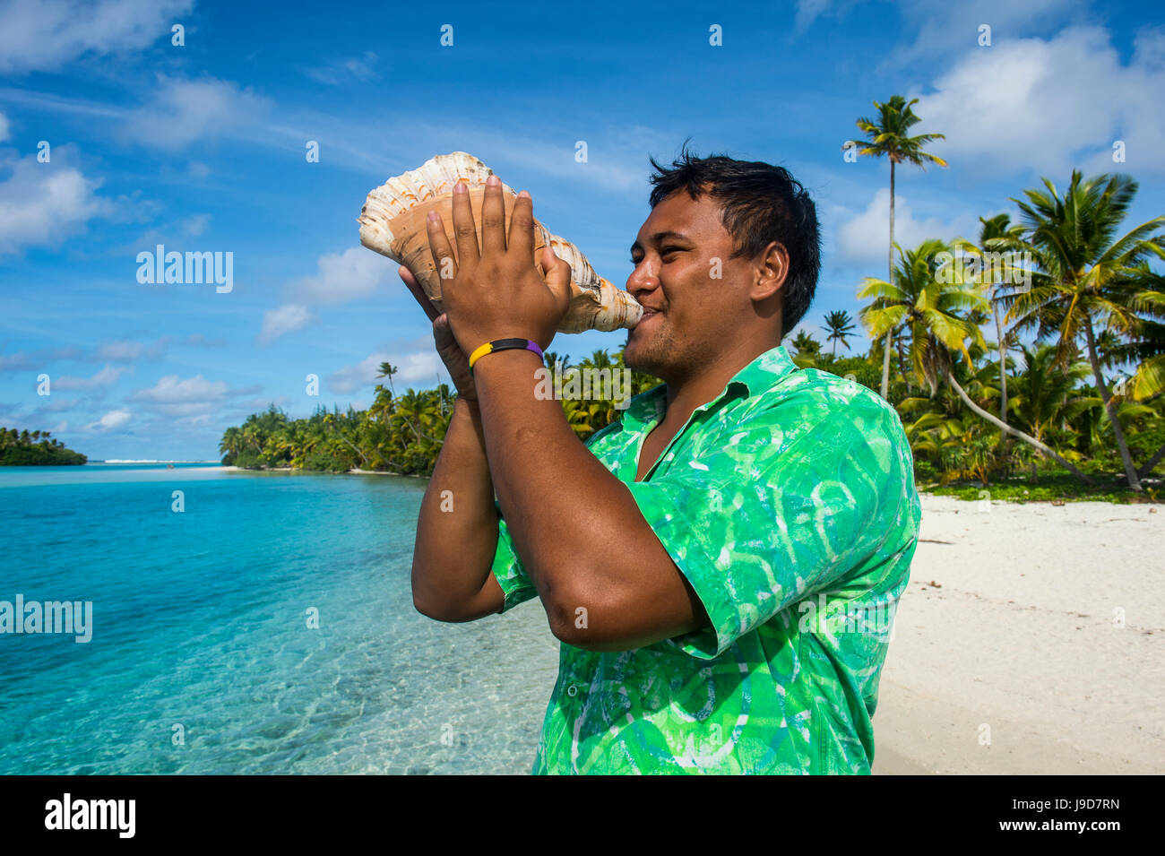 Local man blowing a huge conch, Aitutaki lagoon, Rarotonga and the Cook Islands, South Pacific, Pacific - Stock Image