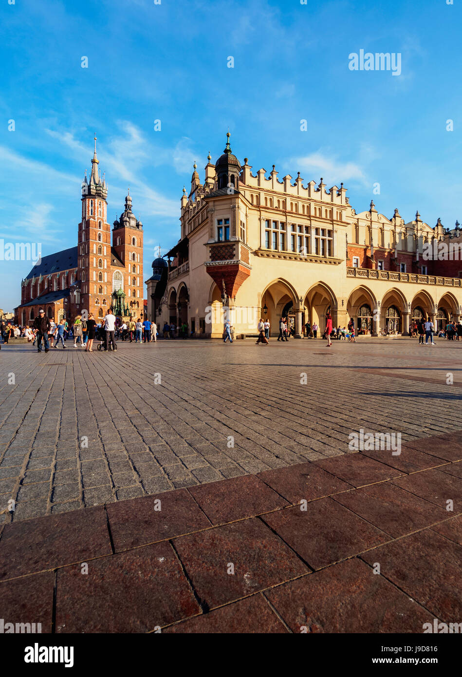 Main Market Square, St. Mary Basilica and Cloth Hall, Cracow, Lesser Poland Voivodeship, Poland, Europe - Stock Image