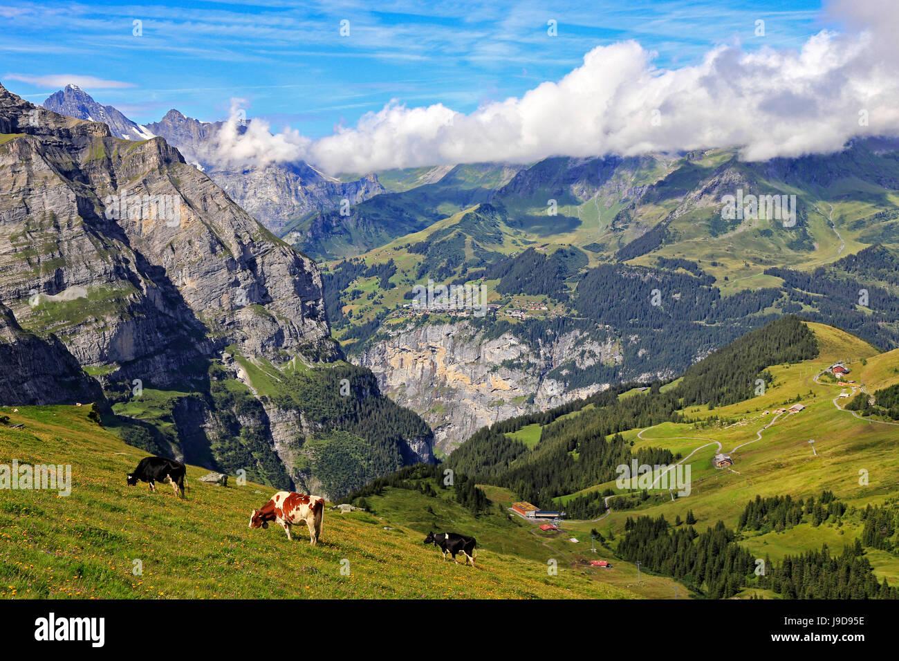 View from Kleine Scheidegg to Murren and Lauterbrunnen Valley, Grindelwald, Bernese Oberland, Switzerland, Europe - Stock Image