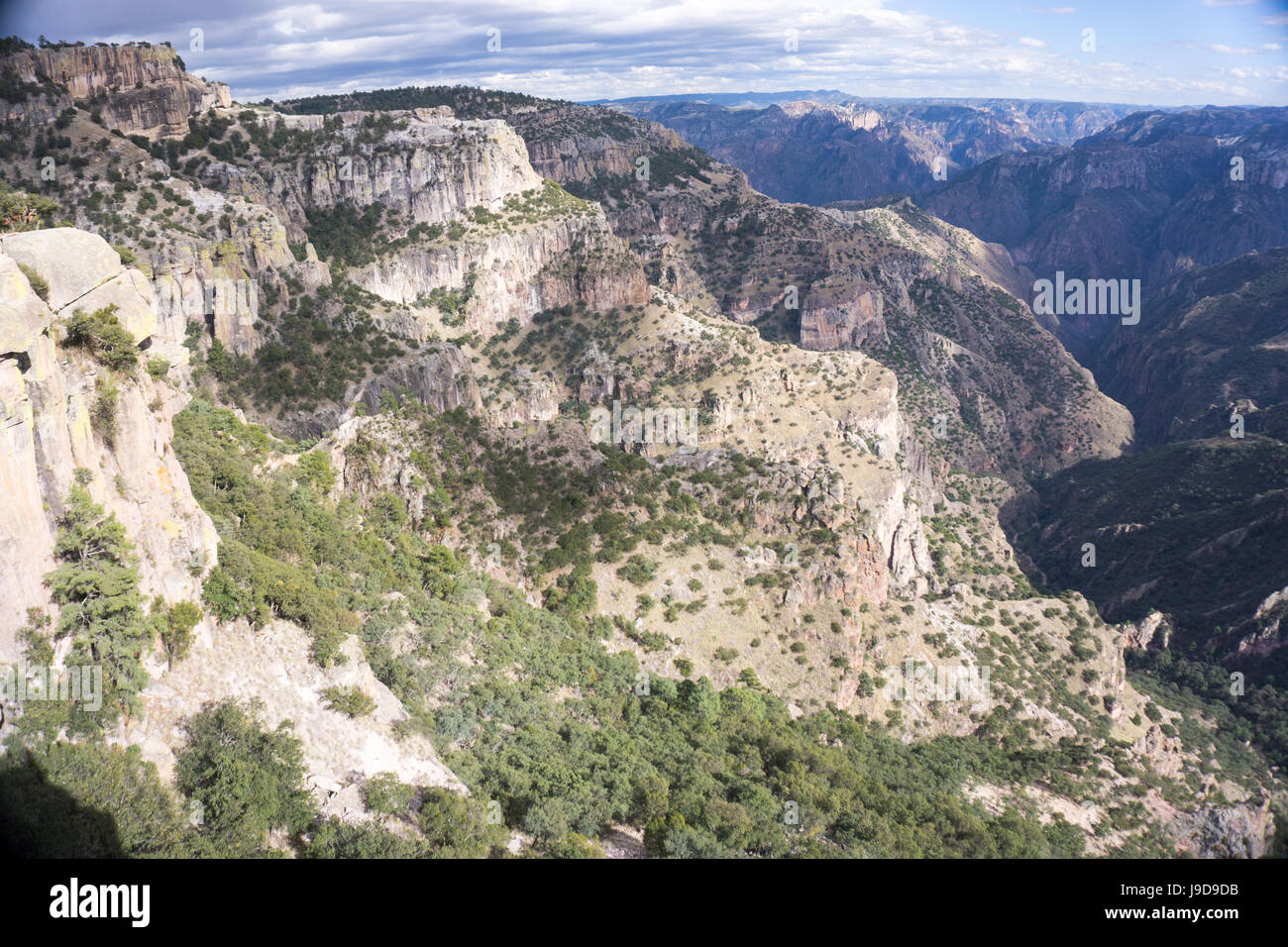 Copper Canyon, larger and deeper than the Grand Canyon, Mexico, North America - Stock Image