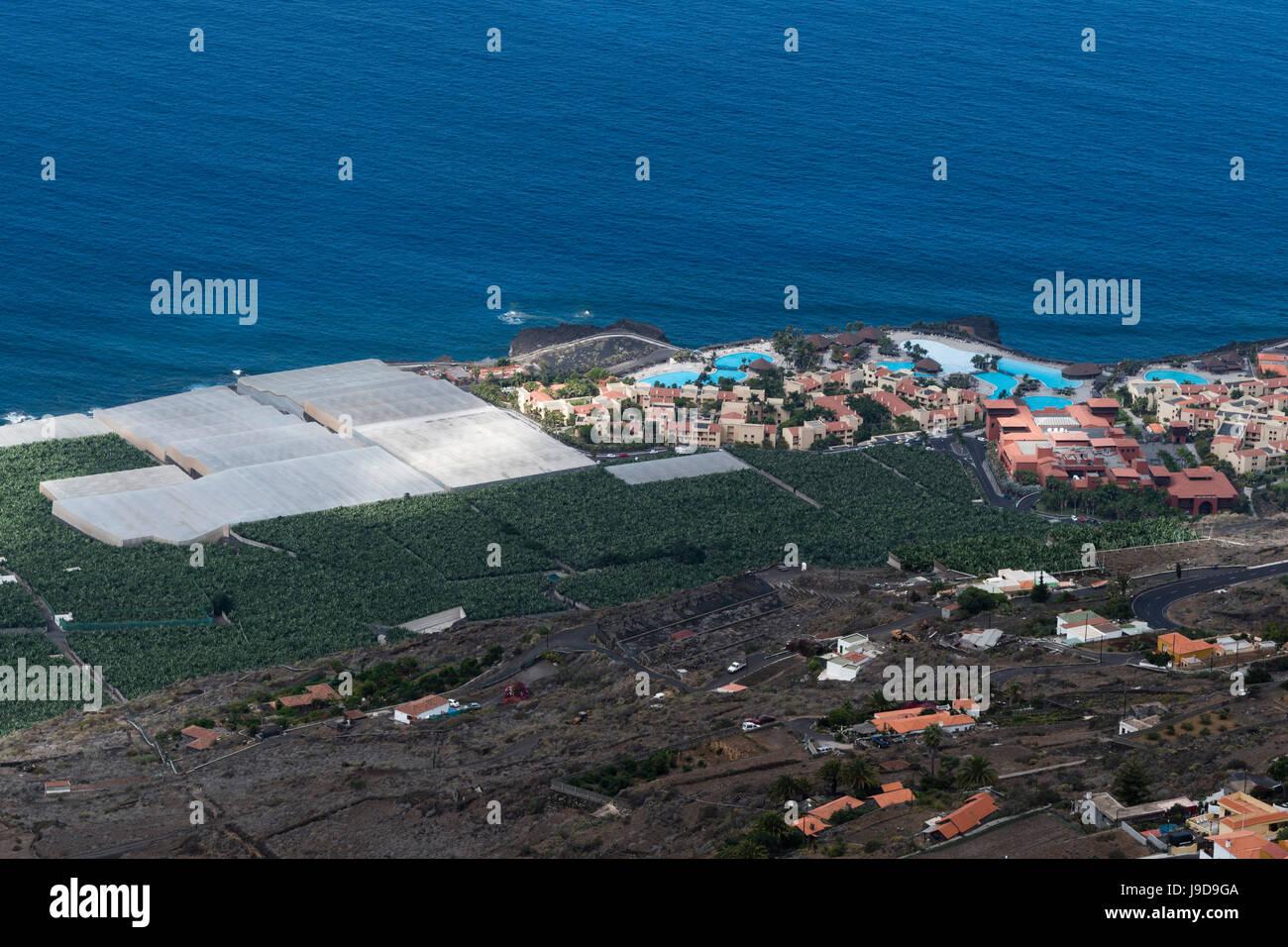 Banana plantations, El Remo, La Palma Island, Canary Islands, Spain, Atlantic, Europe - Stock Image