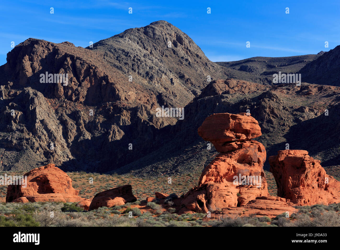 Beehives area, Valley of Fire State Park, Overton, Nevada, USA, North America - Stock Image