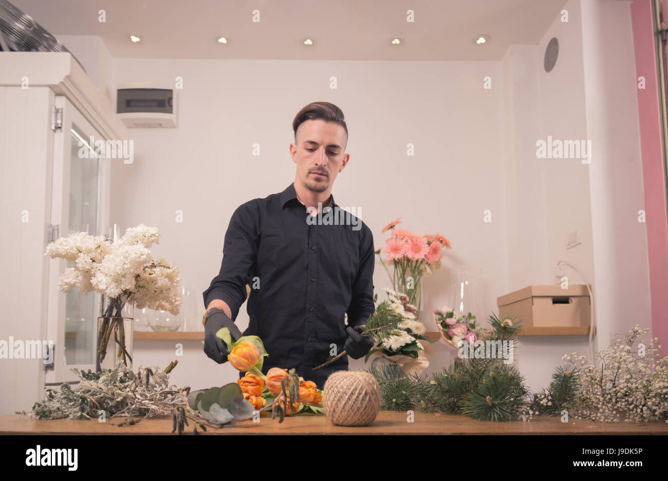one young adult man, florist, picking choosing arranging flowers, flower shop indoors - Stock Image