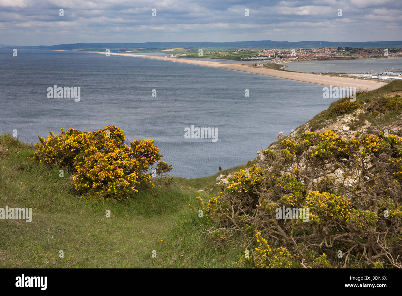 UK England, Dorset, Portland, Clay Ope, Tout Quarry Sculpture Park, view down onto Chesil Beach - Stock Image