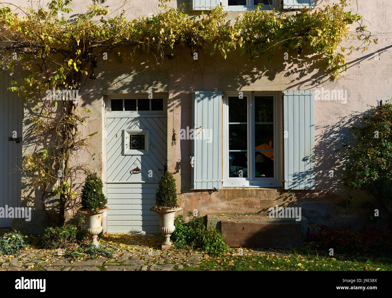 French village. Rustic house with a ivy on a wall - Stock Image
