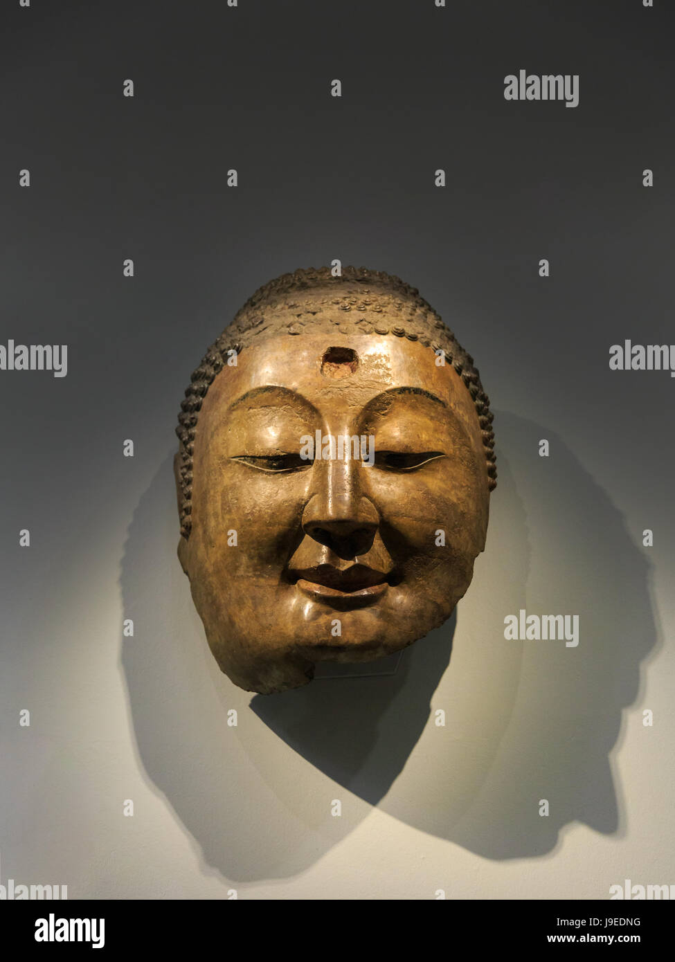 Head of Buddha from the Northern Qi Dynasty of China on display, V&A Museum, London - Stock Image