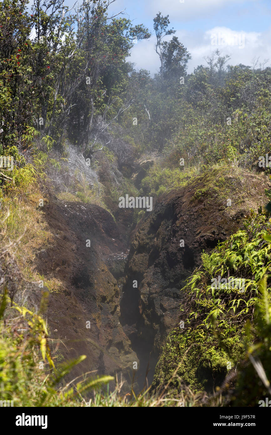 Steam vents in the Volcano National Park on the Big Island of Hawaii. - Stock Image