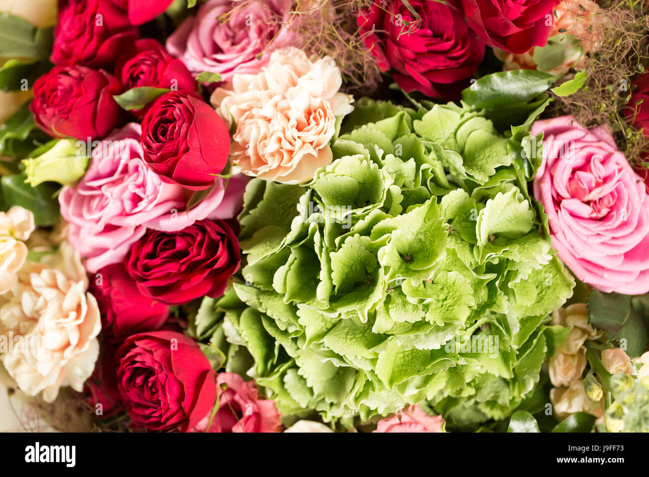 Still life with a bouquet of flowers the florist put together a still life with a bouquet of flowers the florist put together a beautiful bunch of flowers man manual work used different types of flowers and colors izmirmasajfo