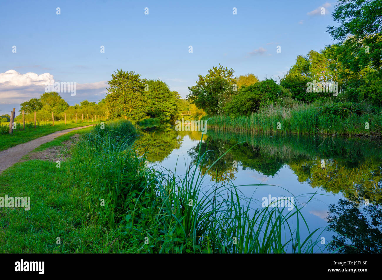 A view looking down The River Kennet at Reading, Berkshire during the late evening. - Stock Image