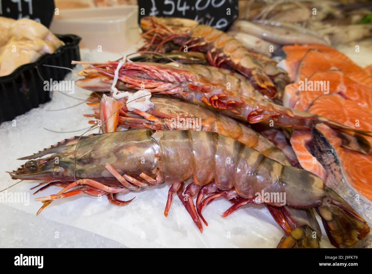 Selection of wet fish / jumbo prawns / prawn; freshly caught and for sale  at West Quay Whitstable Harbour Kent - Stock Image