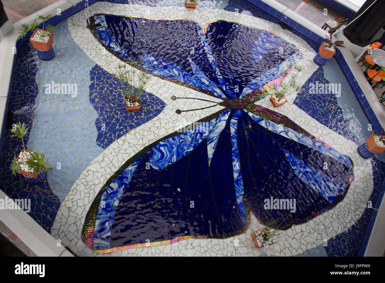 Butterfly pattern tiles in a fountin in Coombia South America - Stock Image
