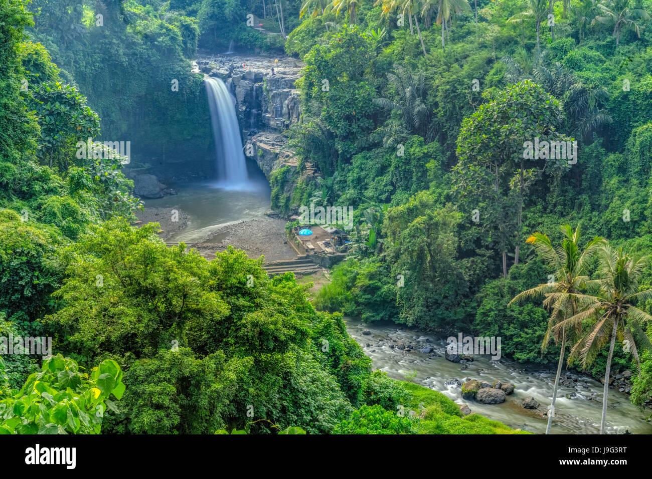 Terjun Blangsinga Waterfall, Ubud, Bali, Indonesia, Asia - Stock Image