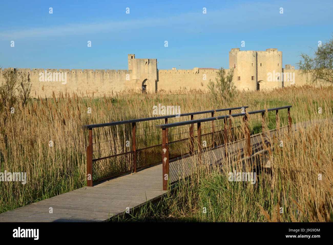 Southern Sea Walls of the Fortified Town of Aigues-Mortes with Reed Beds and Wooden Walkway or Bridge France - Stock Image